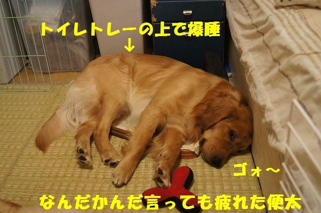 11_20130308223326.jpg
