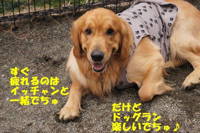 11_20130315170238.jpg