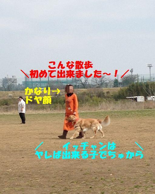13_20130325101855.jpg