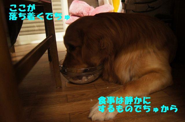 15_20130225223137.jpg