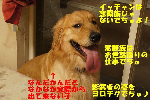 15_20130301203919.jpg
