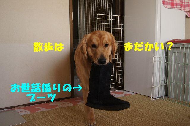 16_20130307013426.jpg
