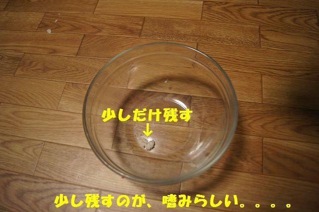 17_20130225223153.jpg