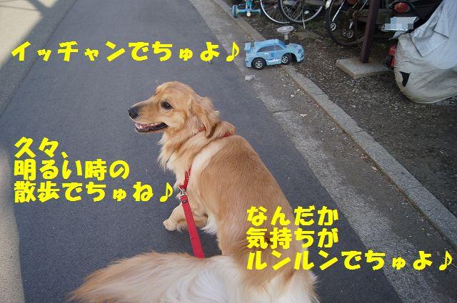 1_20130307013349.jpg