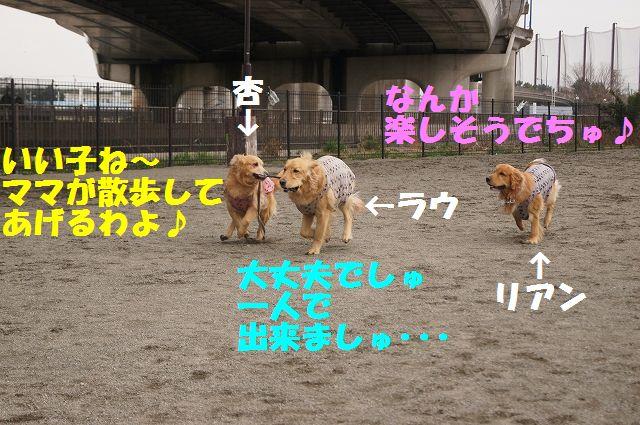 1_20130316193641.jpg