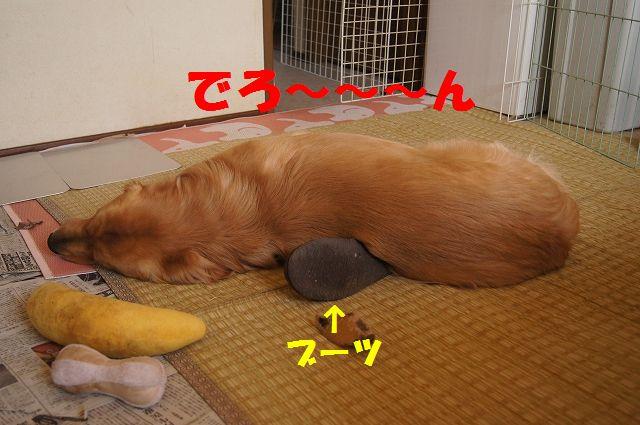 1_20130320215150.jpg