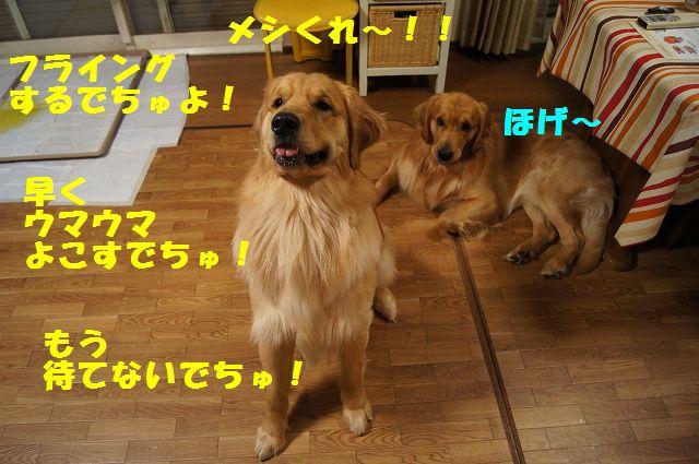 2_20130225223028.jpg
