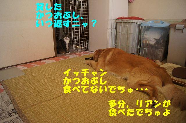 2_20130313051235.jpg