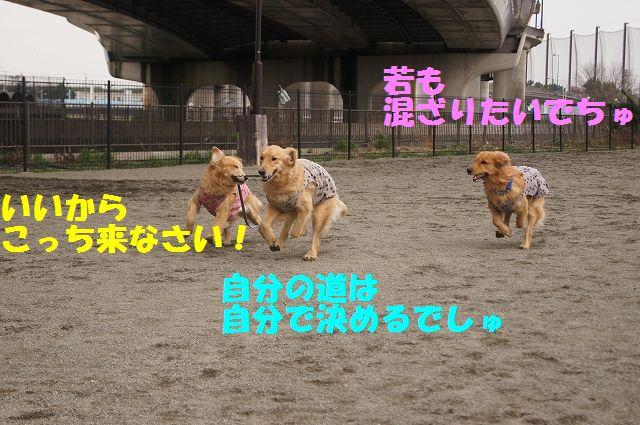 2_20130316193642.jpg
