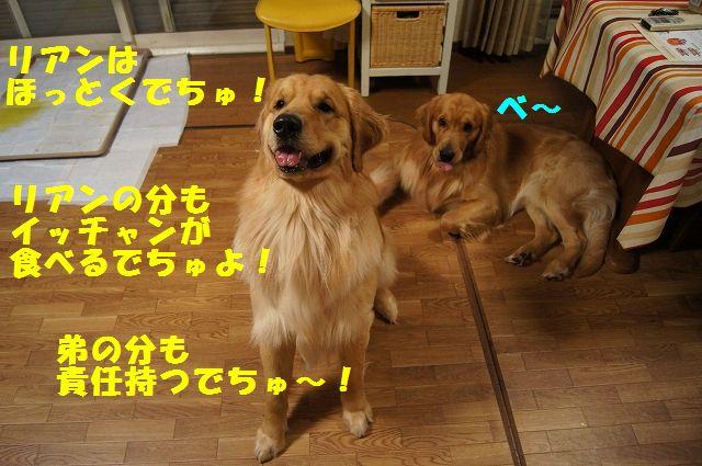 3_20130225223029.jpg