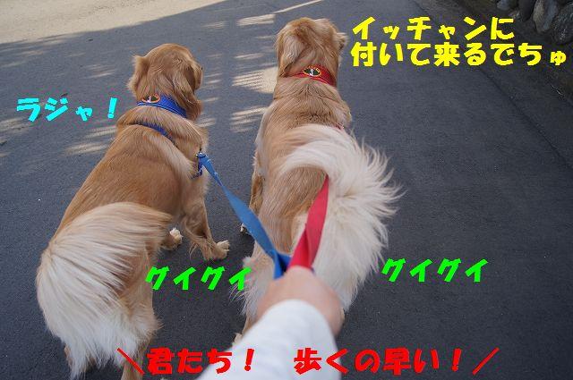 3_20130307013350.jpg