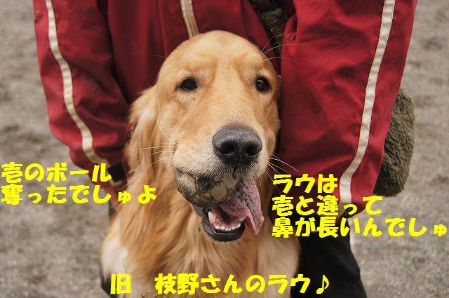 3_20130315170213.jpg