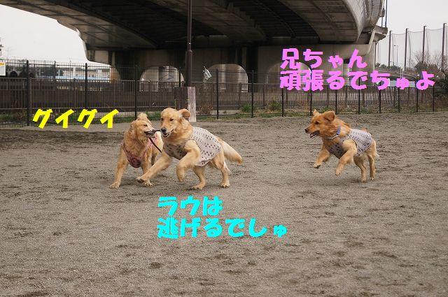 3_20130316193643.jpg