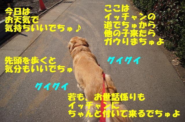 3_20130319014414.jpg