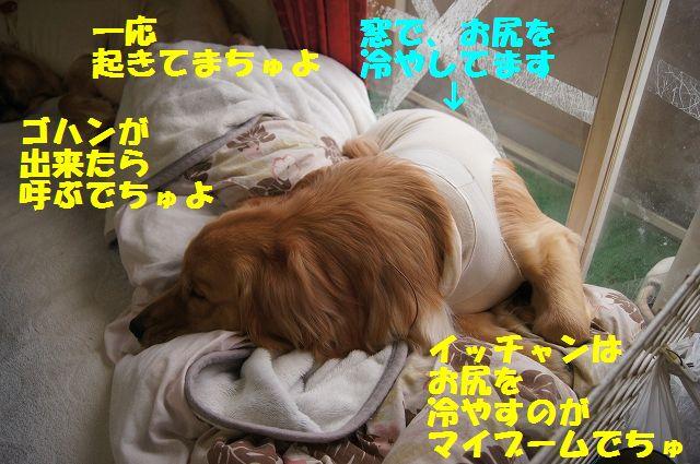 3_20130325083759.jpg