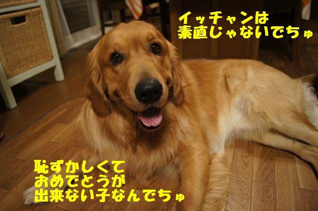 4_20130314231619.jpg