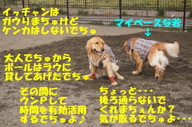 4_20130315170214.jpg