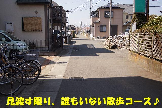 5_20130319014416.jpg