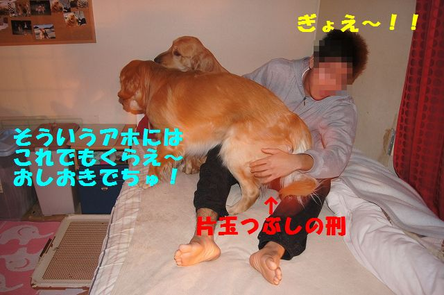 6_20130204031853.jpg