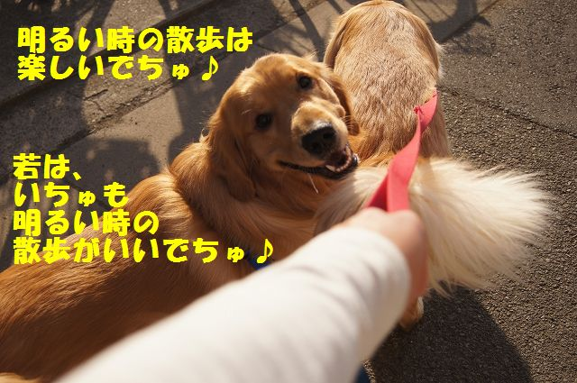 6_20130307013406.jpg