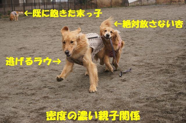 6_20130316193654.jpg