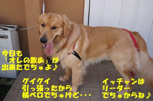 6_20130319014436.jpg