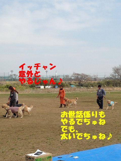 6_20130325101836.jpg