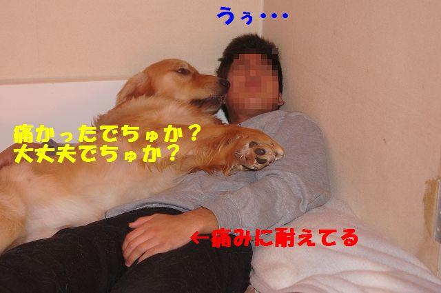 7_20130204031854.jpg