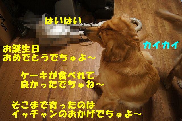 7_20130309064055.jpg