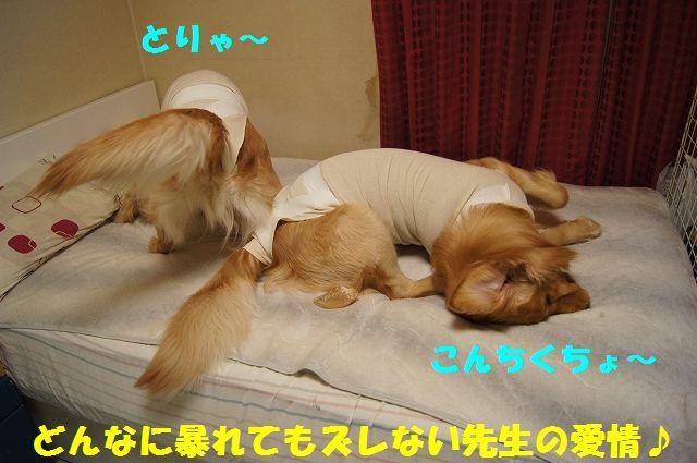 7_20130322152353.jpg