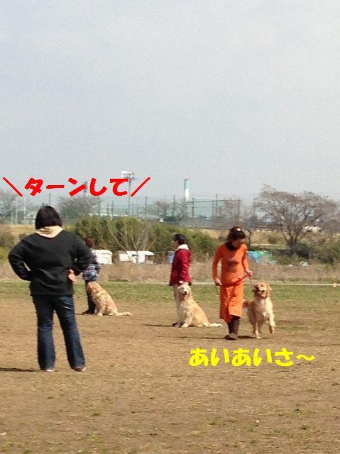 7_20130325103656.jpg