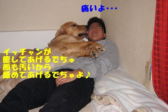8_20130204031855.jpg