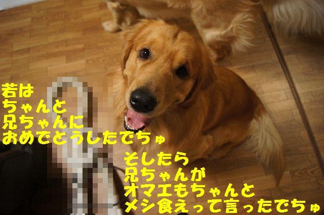 8_20130309064056.jpg