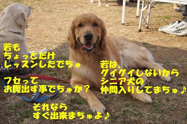 8_20130319042159.jpg