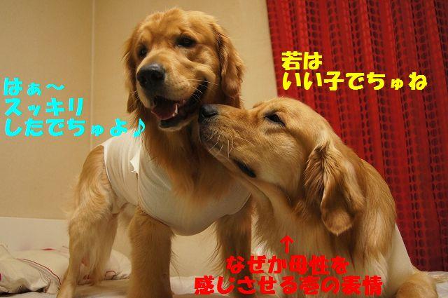8_20130322152354.jpg