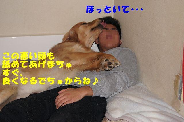 9_20130204031856.jpg