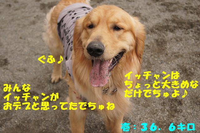 9_20130316193658.jpg