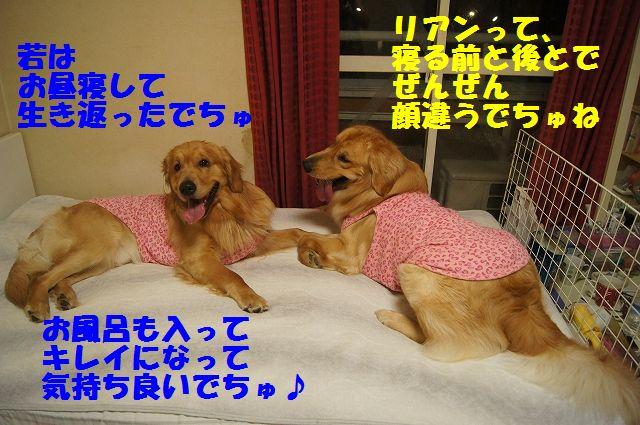 9_20130320215207.jpg