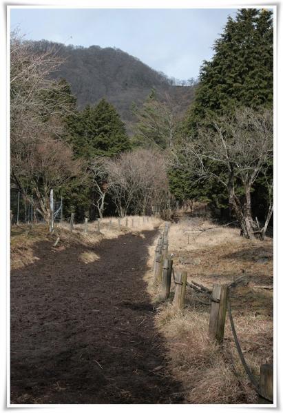 20111221_1.jpg
