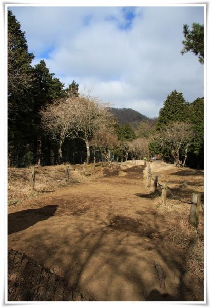 11.12/28塔ノ岳