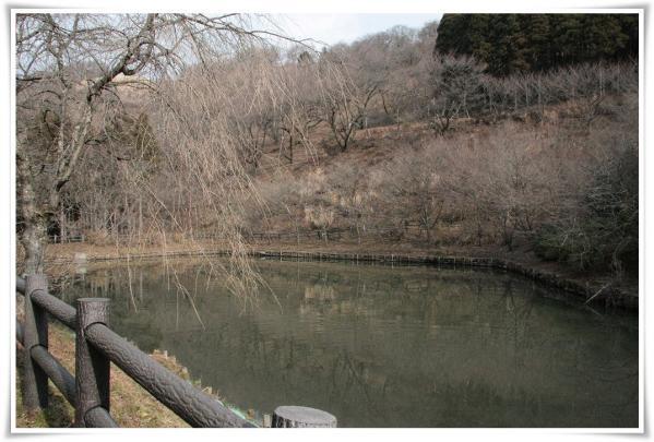 最明寺史跡公園