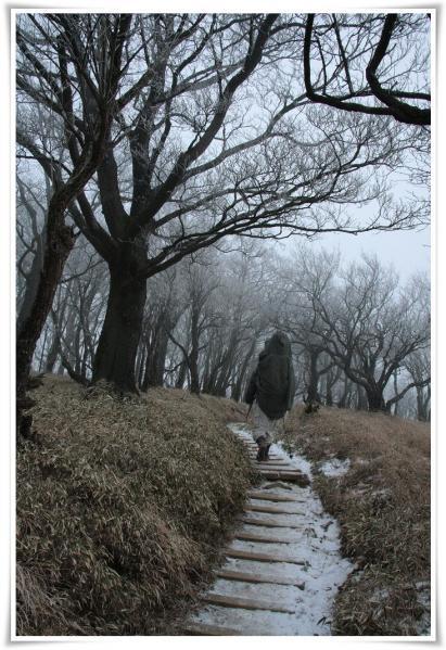 12.1/15塔ノ岳