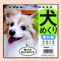 dogb_img01.jpg
