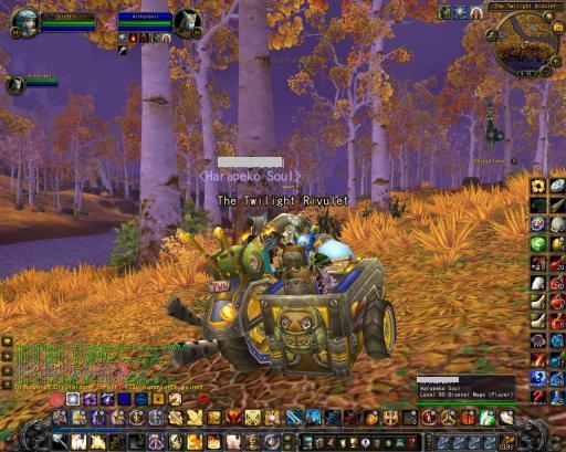 WoWScrnShot_022110_023457_convert_20100415010407new2.jpg