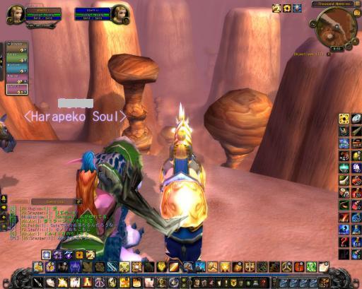 WoWScrnShot_101810_005236_convert_20101026004444.jpg