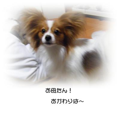 100514.jpg
