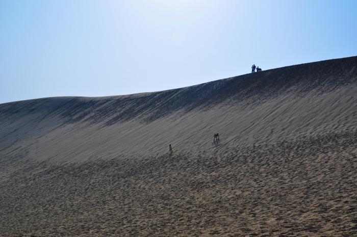 鳥取砂丘 (4)