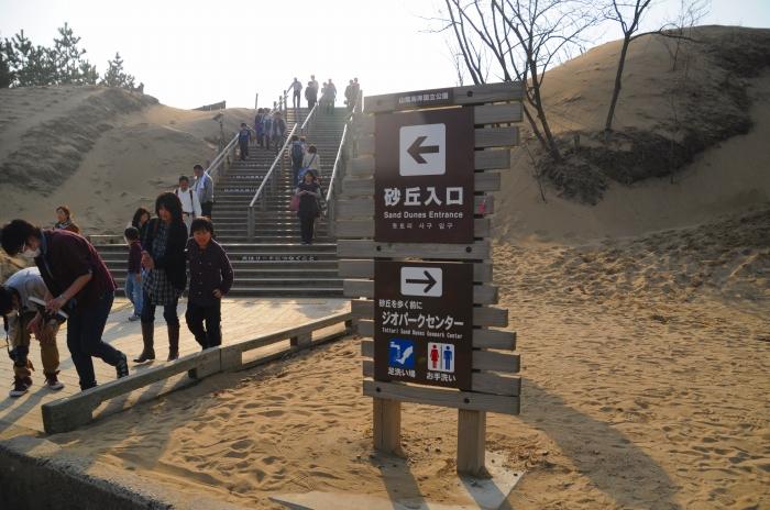 鳥取砂丘 (11)