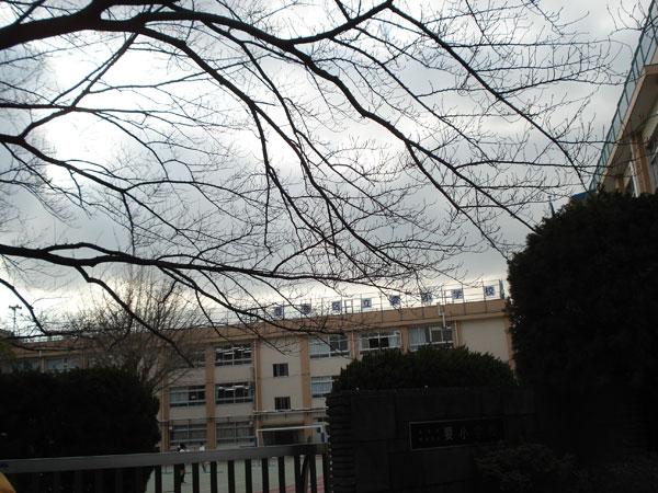 2013_1_24_4.jpg