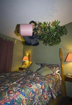 bed_jumping_11.jpg